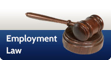 Employment Law Lawyers